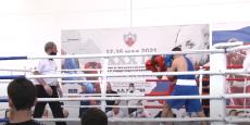 Чемпионат Ростовской области по боксу среди мужчин;