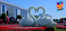 Видеоролик от ДК имени Курчатова посвященный Дню мира